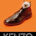 kenzo-fw13-campaign-cat-shoe_web