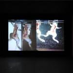 Reanimation! Frog zombie underwater ballet, 2011-Vista mostra Degeneration, OCAT Shanghai