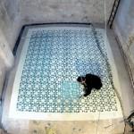 Javier de Riba, Floors