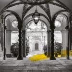 Foto BN Palazzo Asinari di San Marzano