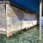 Biennale de La Biche, 2017 - Installation view - Lapo Simeoni