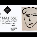 I disegni di Matisse in mostra al museo di belle arti della città