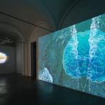 Sarah Ciracì, Like An Ocean With Its Waves... Effimera