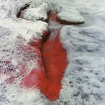 Ana Mendieta, morte