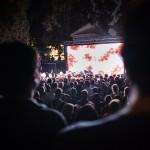 ElectricCampfire2017(c)VillaMassimoFotoAlbertoNovelli