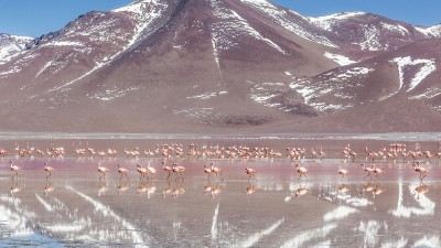 deserto bolivia_001