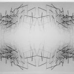 Emanuela Fiorelli  Coincidente 2015 tarlatana e filo di cotone su tela serigrafata cm 70x90