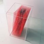 Fiorelli - sculptur box 4 -plexiglass, filo elastico,  50x30x30 -2017