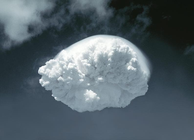 Alberto Sinigaglia, Ivy king, Cloud series, 2017