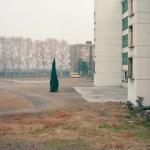 Jiehao Su, Borderland 8