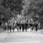 Disordini durante la battaglia di Valle Giulia, archivio Riccardi, DREAMERS