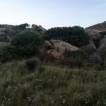 © Luana Rigolli, paesaggio dell'Asinara