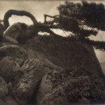 Anne Brigman, The lone pine, Courtesy of the Nevada Museum of Art