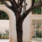 Ai Weiwei, tree, 2018