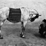 1. Josef Koudelka, Romania, 1968