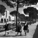 3. Patellani a Reggio Emilia