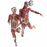 WBP_SoccerTeam_02_path