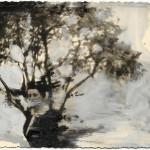 Patrizia-Emma-Scialpi,-The-Dead-Dears,-tecnica-mista-su-foto-d'epoca,-10x15-cm