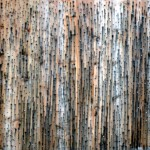 Thomas Brambilla Gallery - Grayson  Revoir, Untitled, 2012, wood and screws, 180 x 200 cm