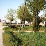 TAV_Auerbacher 2004-31.01