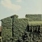 17_LuigiGhirri_Ferrara1981