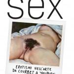 Luca Beatrice Sex copertina