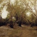 °_Populus euphratica forest°. oil on canvas  30°¡60cm  2006