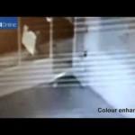 Il video che riprende il ladro rubare i due Damien Hirst
