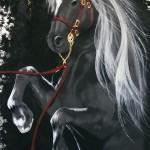 Il cavallo, opera vincitrice del Pennellod'oro nel 2010