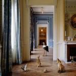 Karen-Knorr-dalla-serie-Fables-Musee-Carnavalet-20041