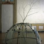 MerzMario_igloo con albero