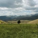 Paesaggio-08-09-2014