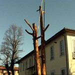 L'Albero delle luci, Il Cantiere, 2000-2001 (3)