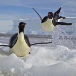 Missione Antartide