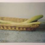 Zucchini_Gaeta_1997_Cy Twombly_ Courtesy_Fondazione Nicola Del Roscio