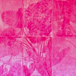 nature is artifactual_pink alocasia_ light box (1)