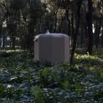 Johan Brunel, Sauna bosco