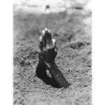 MAURIZIO CATTELAN, Mother, 2000 (1999) - courtesy Fondazione MAXXI