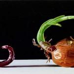 Giuseppe Carta, Orti della germinazione