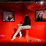 Imperdibile Marilyn