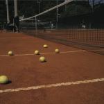 Domenico Laterza, Aniene Tennis Lemons