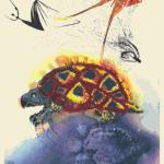 La-storia-della-tartaruga-Mock-1
