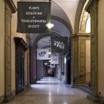 Andreco_The Plants are Revolutionaires_Palazzo Poggi BO_02,2018_0113