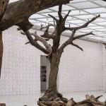 Ai Weiwei, Tree