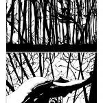 Perso nel bosco_2
