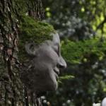 scultura di fango su albero_elena candeo