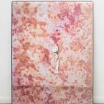 02 Pink Dream Emiliano Maggi_LR
