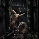 Donnarumma-Pevere_Humane-Methods_by-Vason2_web