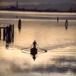 Venezia. Foto di  Fulvio Roiter. Copyright Fondazione Fulvio Roiter