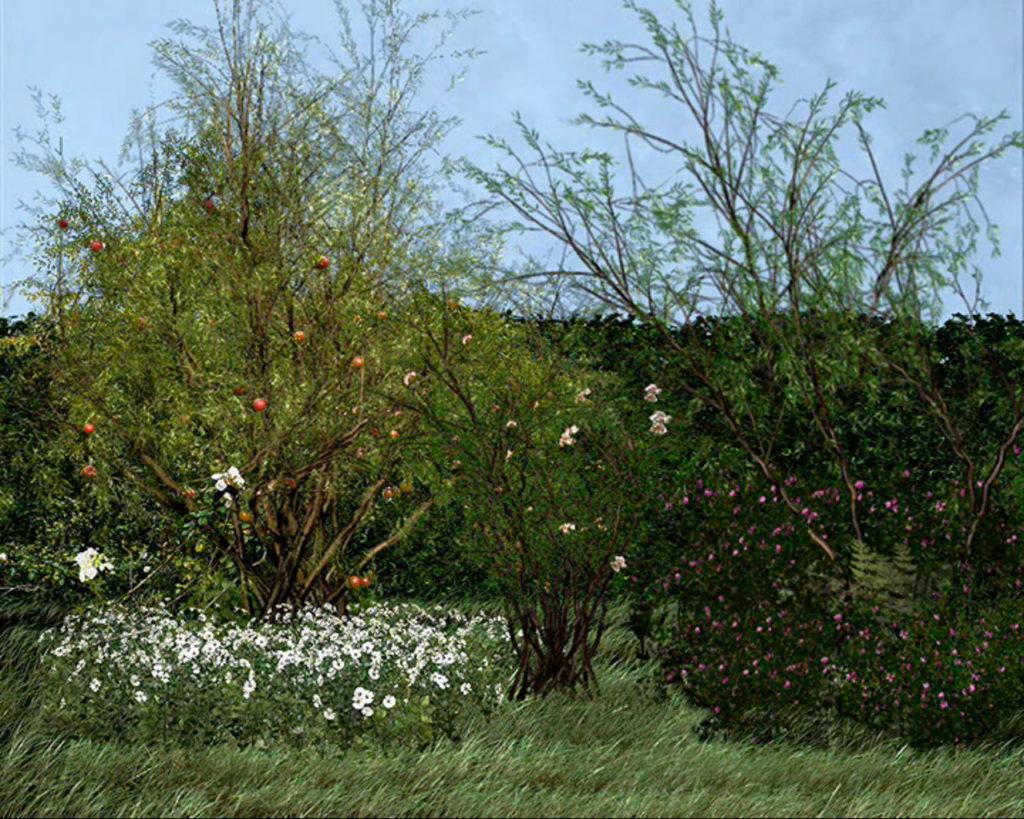 Giardino di Maresa, Still da video